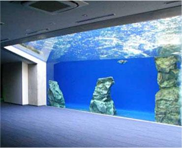 しまね海洋館(ペンギン館)